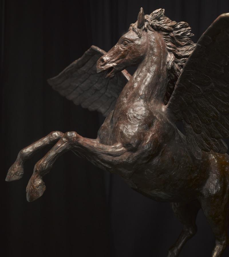 Pegasus4.jpg