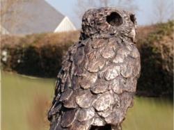 Owl-II