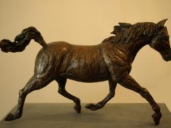 paard201301.jpg