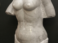 Marmer torso 1.jpg